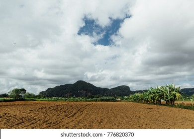 Plowed red earth. Around the greens and trees. Against the backdrop of mountains and hills. Blue sky.
