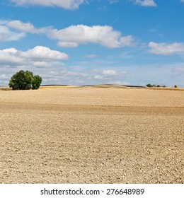 Plowed Sloping Hills of Spain in the Autumn