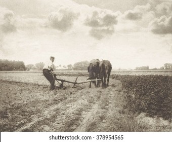 Plowman, by J.G. Beers and Laurens Hansma, Dutch farmer working a horse drawn plow, 1904, English photograph