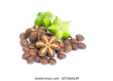 Plukenetia volubilis or sacha inchi peanut seed isolated on white background