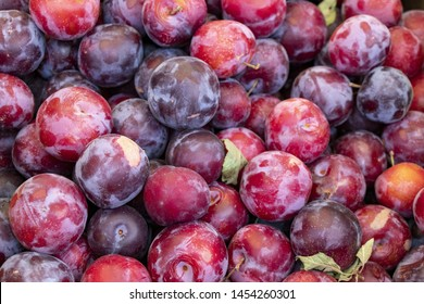 Plum background. Red fresh ripe plums placed in a box on the market. Plum closeup