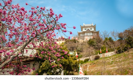 Plum blossoms with Innoshima Suigun Castle in the background which was one of the bases of operation for a pirate organization during the Warring States Period, in Innoshima Island.
