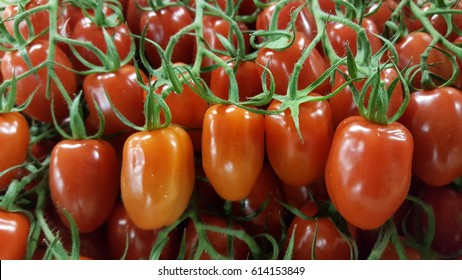 Plum cherry tomatoes on the vine
