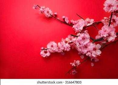Plum Flowers Blossom on red background good for chinese new year use