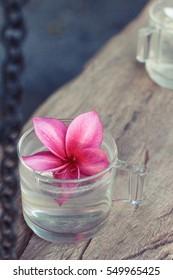 Plumeria flower with beautiful light