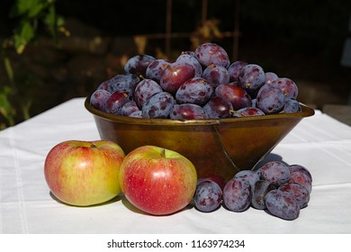 Plums in a cup of metal with apples on the desk outdoor in the garden at summertime