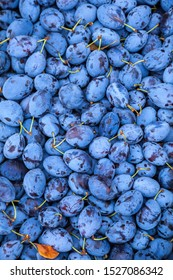 Plums in the market. Food photo of fruit plums. Textures of fresh blue plums.