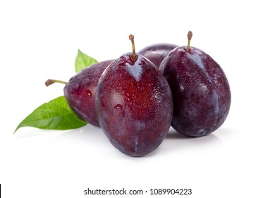 Plums plum prunes prune leaves fruits fruit isolated on a white