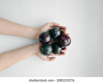 Plums Top view Girl is holding a handful of ripe plums Photo with copy space processed by VSCO filter Minimalist style