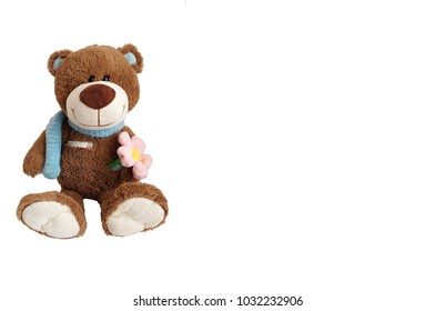 plush brown bear c blue scarf around his neck, in his hand flower, armpit thermometer on white background