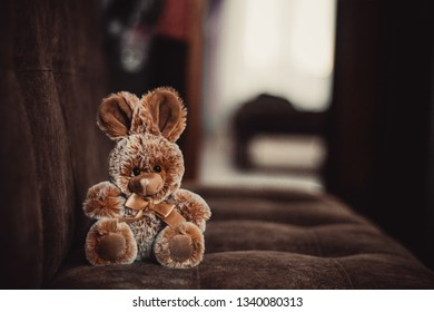 plush cute brown bunny toy is sitting on the sofa, it is Easter, the photo has copyspace