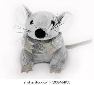 plush rat on white