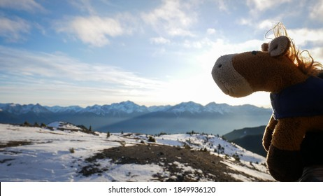 Plush toy (horse) taking a selfie on top of the world / mountains in winter.