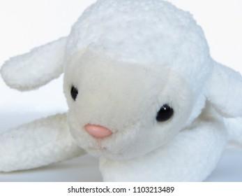Plush White Lamb