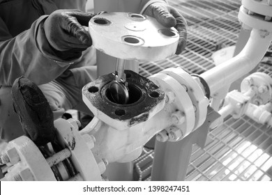 PM and Inspection check valve on closed drain sump pump process,Oil and gas offshore platform.