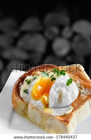 Poached egg on toast. A traditional English breakfast or snack. Image from my Pub Food Set. Copy space.