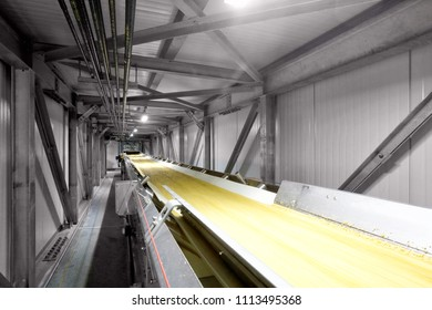 Pocatello, Idaho, USA July7, 2017 A high tech stailnless steel conveyor belt, in a clean, modern food processing facility, rushes barley from storage to processing.