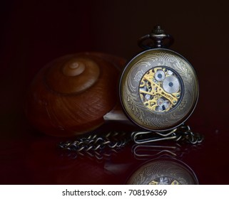 Pocket watch and shell on the table