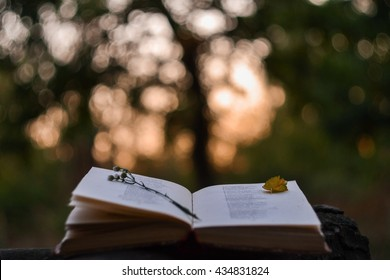 Poetry book in front of blurred sunset background