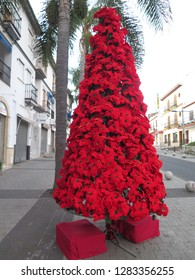 Poinsettia flower Christmas tree in Andalusian village Street