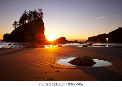 Point of Arches, Olympic National Park, Washington State