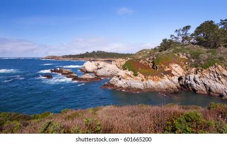 Point Lobos SP, California
