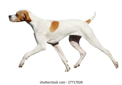 Pointer isolated with clipping path