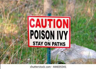 Poison Ivy warning sign in forest