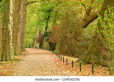 Poissy, France - october 29 2017 : the Meissonier park in autumn