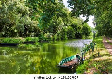the Poitevin marsh