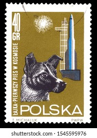 POLAND - CIRCA 1963: A stamp printed in Poland shows first Living being in space - dog Laika from Soviet Union (USSR), circa 1963