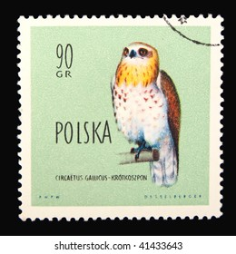Poland - circa 1965: A stamp printed in Poland showing eagle circa 1965