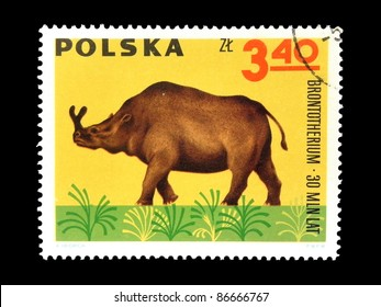 "POLAND - CIRCA 1966: A stamp printed in Poland shows animal with the inscription ""Brontotherium 30 million years"" from the series "" Dinosaurs, Prehistoric Vertebrates"", circa 1966"