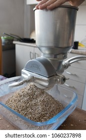 POLAND, KRAKOW 2018, Photo shows malt being grinded in homebrewing conditions in a kitchen with a small scale grain mill held by the hand of the operator.
