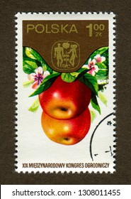 """Poland stamp no circa date: A stamp printed in Poland shows Apple, the series """"The 19th International Hortcultural Congress."""