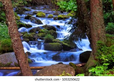 Poland, Tatra Mountains, Zakopane - Dolina Koscieliska Valley and Potok Koscieliski Creek