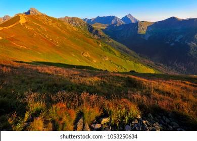 Poland, Tatra Mountains, Zakopane - Swinica, Krotka, Krywan peaks, Cicha Dolina and  Walentkowa Dolina Valleys with High Tatra mountain range panorama in background