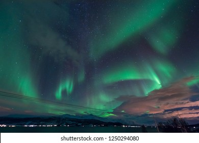 The polar arctic Northern lights aurora borealis sky star in Scandinavia Norway Tromso in the farm winter snow mountains