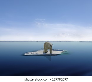 Polar bear on an ice floe in antarctica