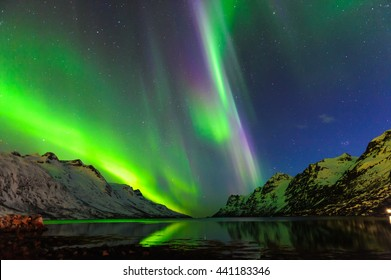 The polar lights in Norway . Ersfjord