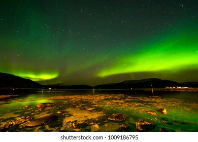 The polar lights in Norway . Ersfjord. Tromso