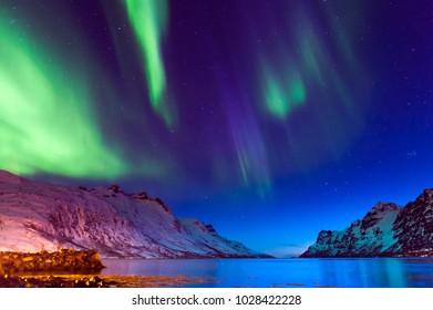 The polar lights in Norway. Tromso.Ersfjord