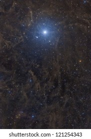 """Polaris, also known as the """"north star"""", is surrounded by large complex dust structures, known as molecular clouds or """"galactic cirrus""""."""