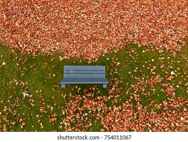 Pole aerial of blue bench, autumn leaves and green grass.