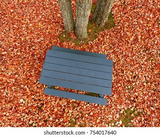 Pole aerial of blue picnic table, autumn leaves and trees.
