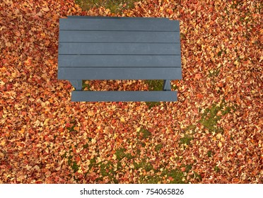 Pole aerial of blue picnic table and autumn leaves.