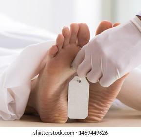 Police coroner examining dead body corpse in morgue
