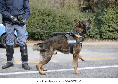 police dog barks during an anti-terrorism control in the town