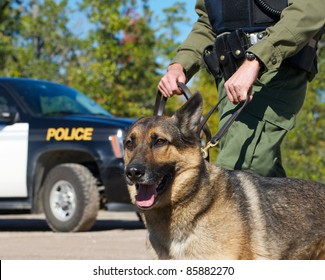 Police dog with K 9 unit officer and  police vehicle in the background.