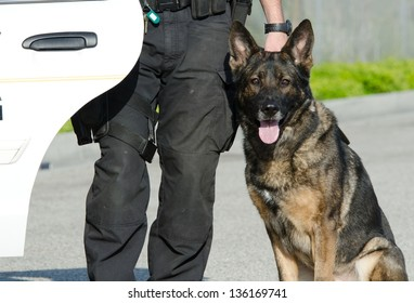 A police dog next to his handler and their patrol car.